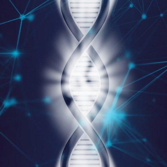 dna, life, biotechnology