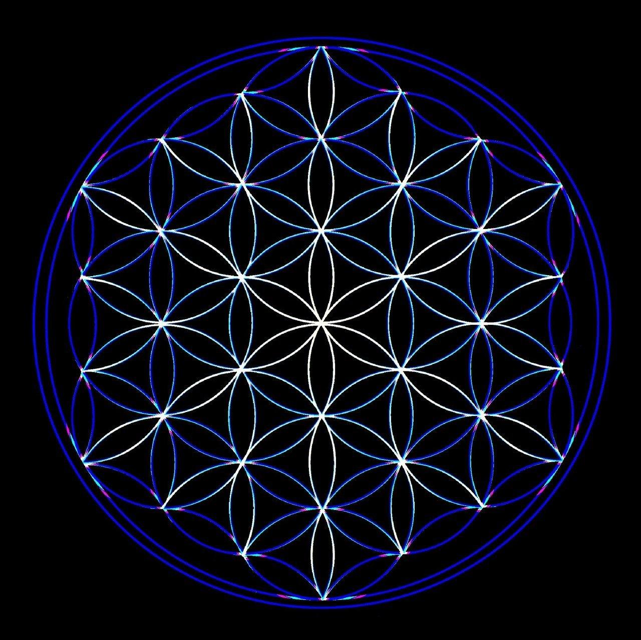 flower of life, geometry, universe