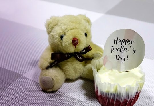 teacher's day, cupcake, bear