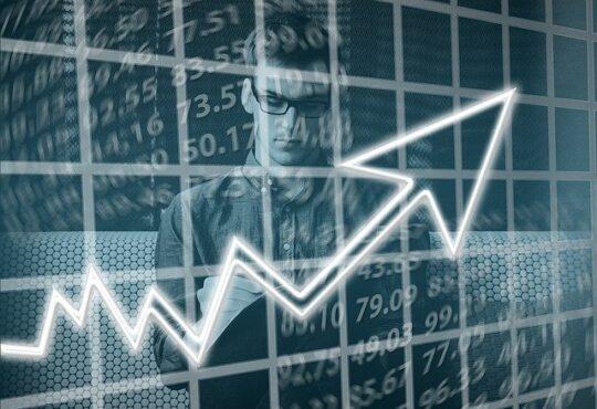 অর্থনীতি ও সংবিধান